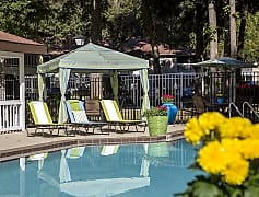 Relax in the shade under Carrington Lane's poolside cabanas.