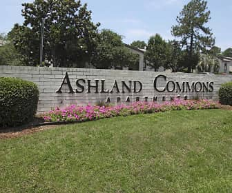 Community Signage, Ashland Commons, 0