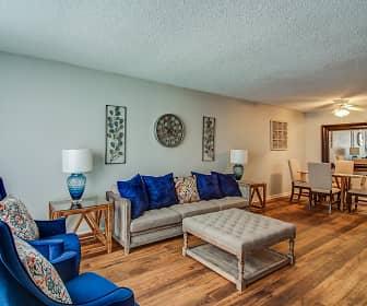 Living Room, Township, 0