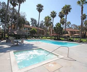 Pool, Villas At Camino Bernardo, 0