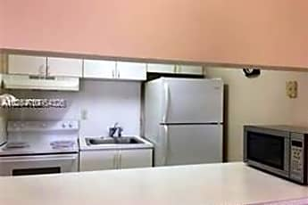 Kitchen, 251 NW 177th St, 0