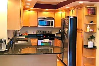 6. Kitchen.jpg, 211 E Ohio Street Apt 2016, 0