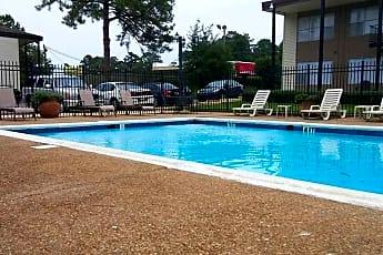Pool, Misty Hollow, 1