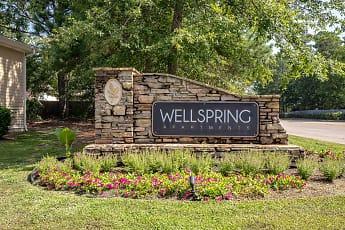 Wellspring, 0