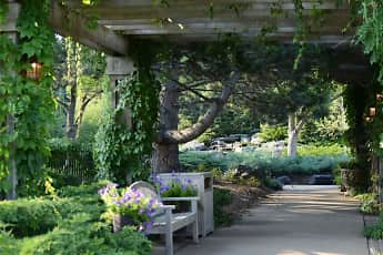Courtyard, Cedars of Edina, 1