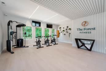 Fitness Weight Room, The Forest, 1