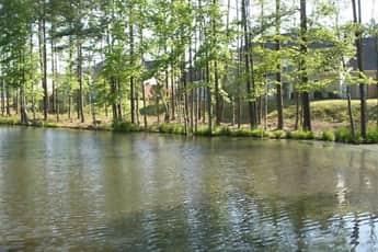 Lake, Taylor's Pond, 1