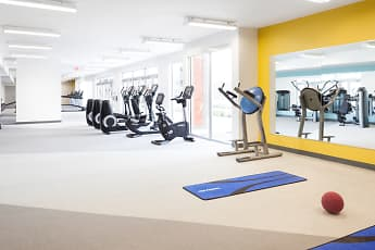 Fitness Weight Room, Onyx, 1
