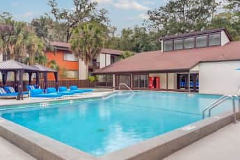 Pool, The Social at Tallahassee Student Living, 0