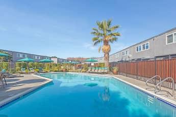 Pool, The Preston at Hillsdale, 2