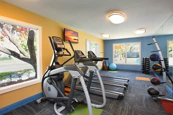 Fitness Weight Room, Agora at Port Richey, 1