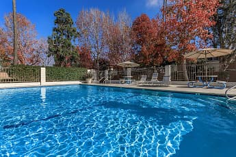 Pool, Sea Breeze Rental Townhomes, 0