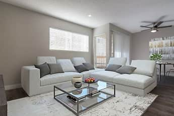 Living Room, The Modern Cactus, 1