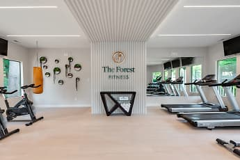 Fitness Weight Room, The Forest, 0
