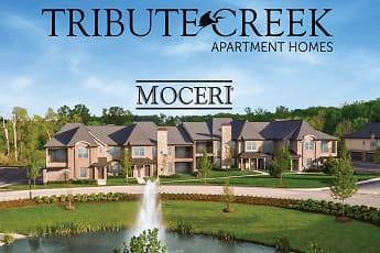 Building, Tribute Creek Apartments Homes, 0