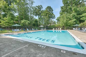 Pool, Tall Trees Apartments, 2