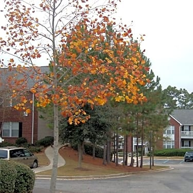 Timber Ridge Apartments 6700 Wall St Mobile Al Apartments For