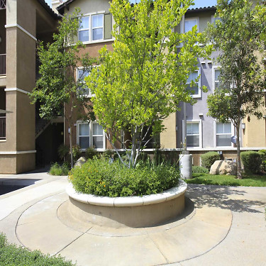 Canyon Crest Luxury Apartments - 1550 Central Avenue ...
