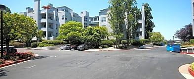 Isle Cove Houses For Rent Foster City Ca Rentcom