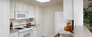 Excellent Arlington Va Apartments For Rent 443 Apartments Rent Com Home Interior And Landscaping Ologienasavecom