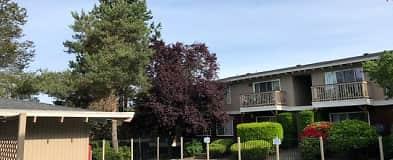 Lynnwood Wa 1 Bedroom Apartments For Rent 52 Apartments Rent Com