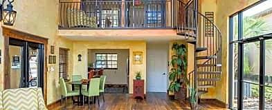 Kissimmee Fl 1 Bedroom Apartments For Rent 119 Apartments Rent Com