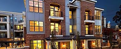 Charlotte Nc 1 Bedroom Apartments For Rent 223 Apartments Rentcom