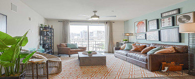 New York, NY Pet Friendly Apartments for Rent - 811