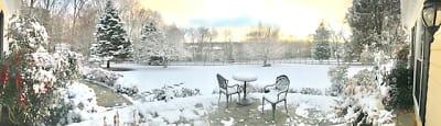 Fox Run Farm Snowday.JPG