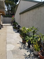 Side of the house.jpg