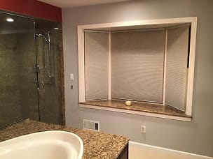 window in master bath.jpg