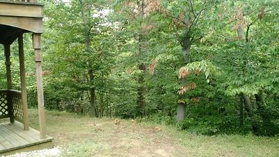 Stony Run Wooded Ravine
