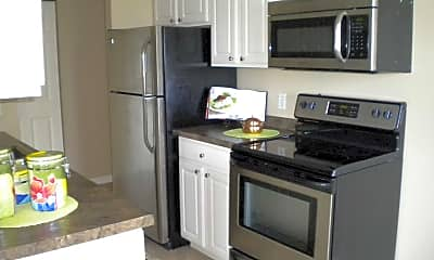 Kitchen, Gleason Lake, 1
