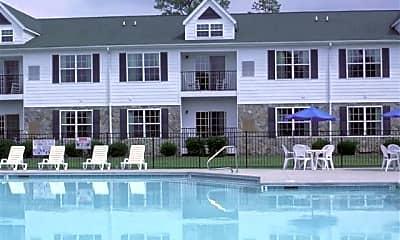 Pool, 510 Little River Farm Blvd D201, 1