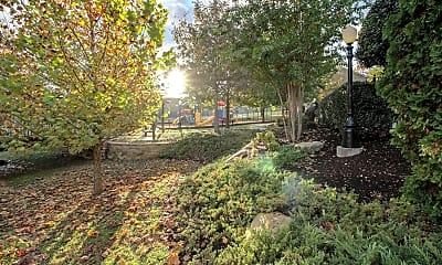 Landscaping, Davenport Condominiums, 2