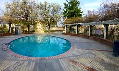 Pool, 19849 Sandpiper Pl, 2