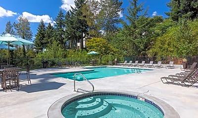 Pool, Forest Rim, 2