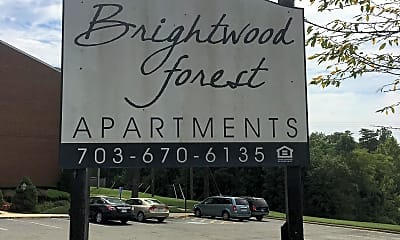 Brightwood Forest, 1