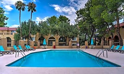 Pool, The View At Catalina, 0