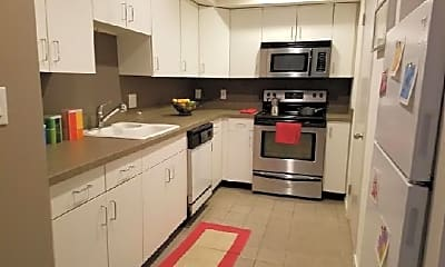 Kitchen, 231 Race St, 1