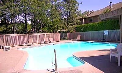 Pool, 1519 E Cambridge Ln, 2