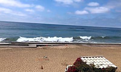Patio / Deck, 11914 S Beach Club Way, 2
