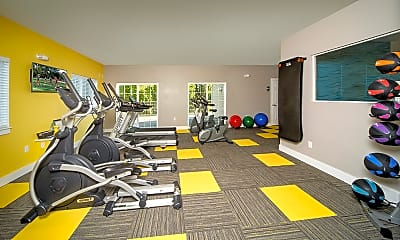 Fitness Weight Room, Timberview Apartments, 0