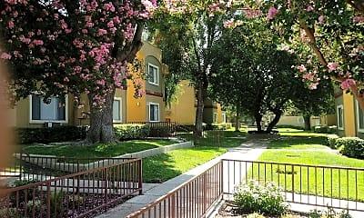 Lakeview Terrace Aparetment Homes, 0