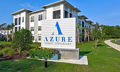 Azure Carnes Crossroads, 2