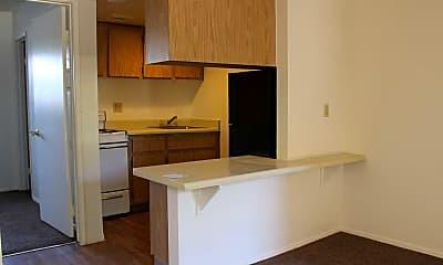 Kitchen, Canyon Palms, 1