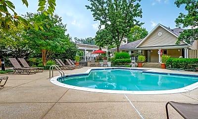 Pool, Springwoods at Lake Ridge Apartment Homes, 1