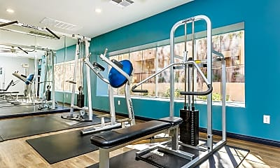 Fitness Weight Room, The Equestrian, 2