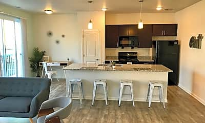 Kitchen, Monon Lofts, 1