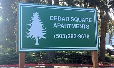 Cedar Square, 1